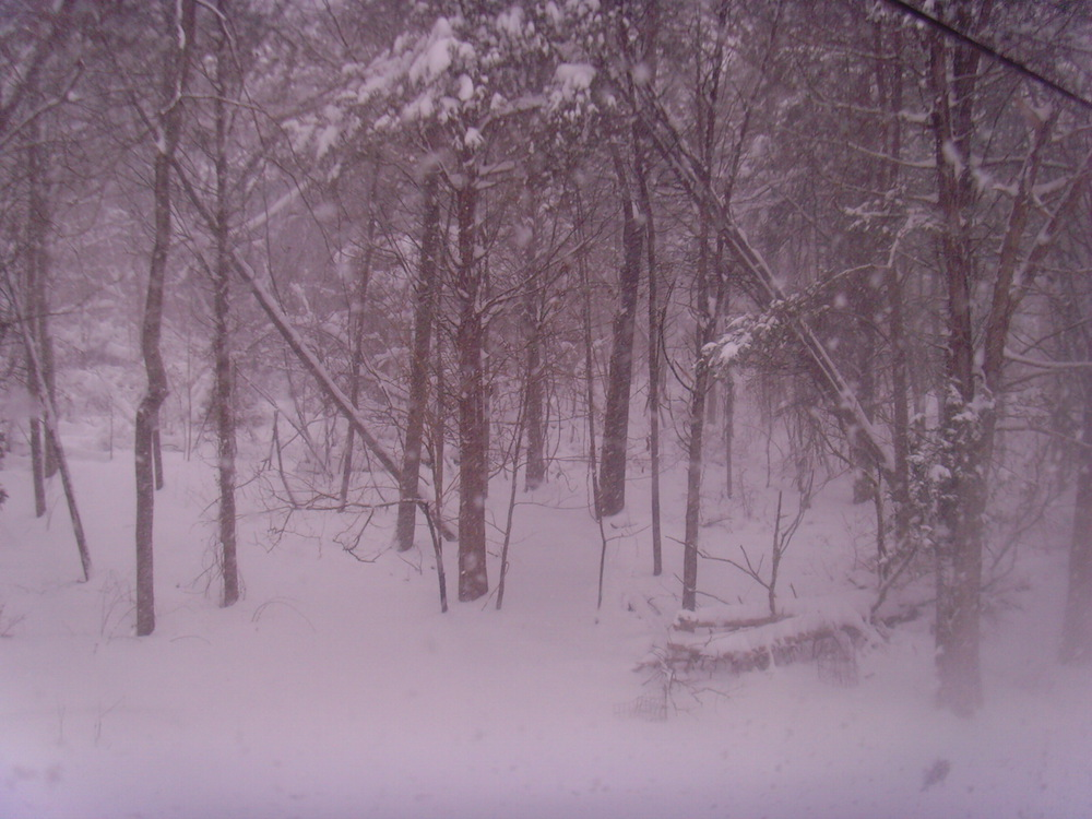 During the blizzard.