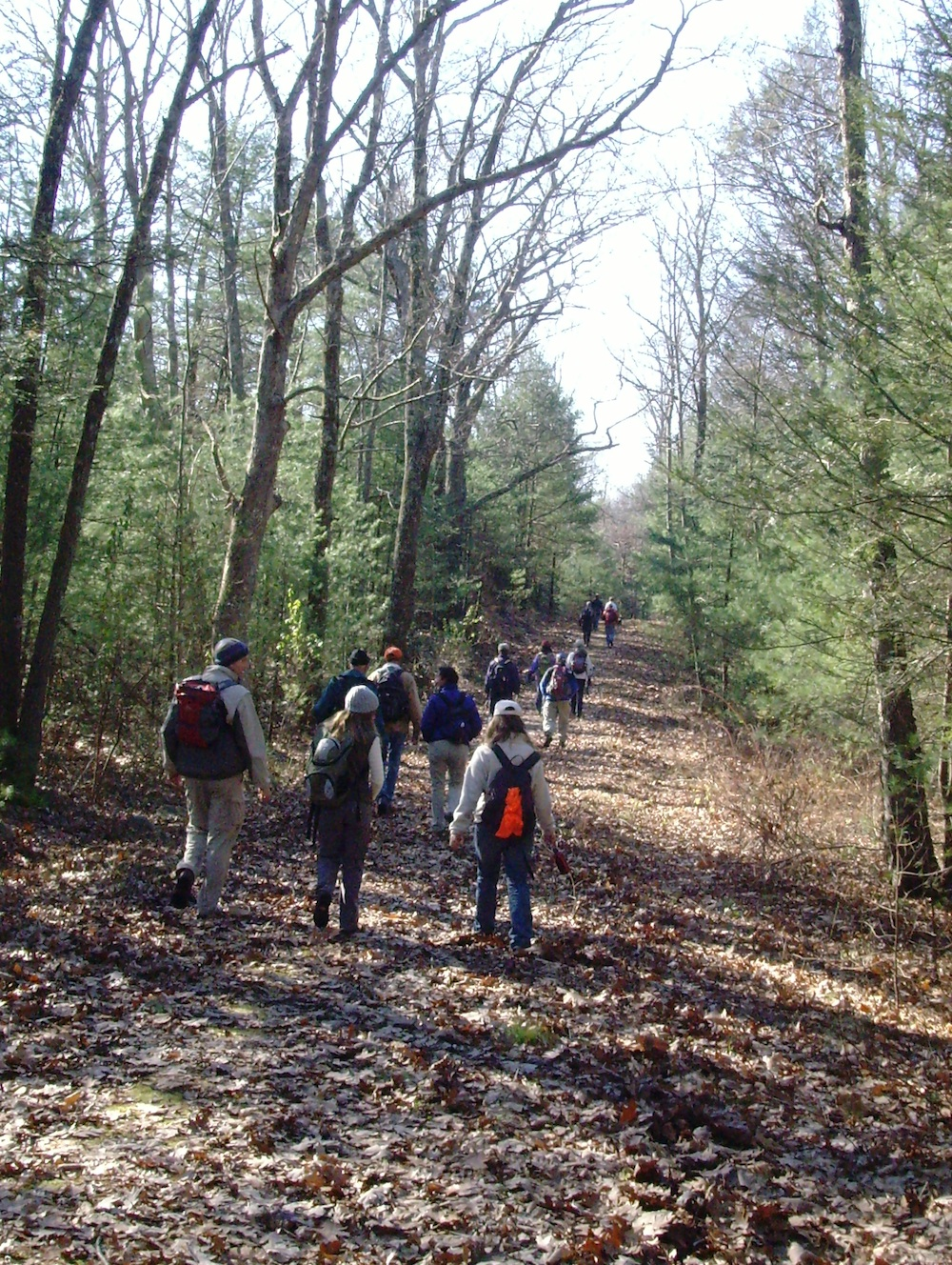A typical group hike on easy terrain.