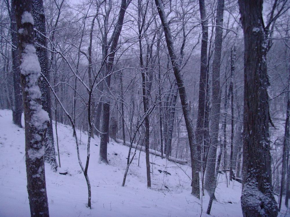 snowy_evening